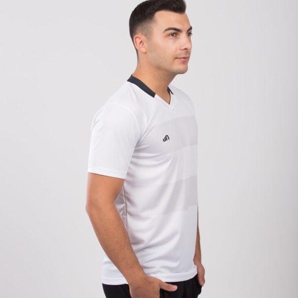 alb 3